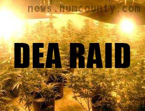 Arcata is facing DEA raids humboldt county