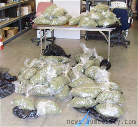 Cops seize 45 pounds of pot from woman's car